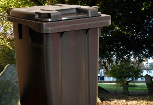 Citadel 'browned off' over bins
