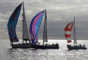 Mallard cruises to victory