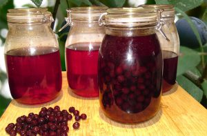 Save sloe gin for our annual contest