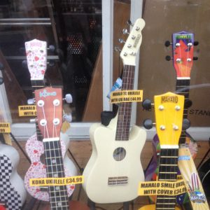 Ukelele. Various colours, prices and patterns, Rye Music Trading Company, Lion Street