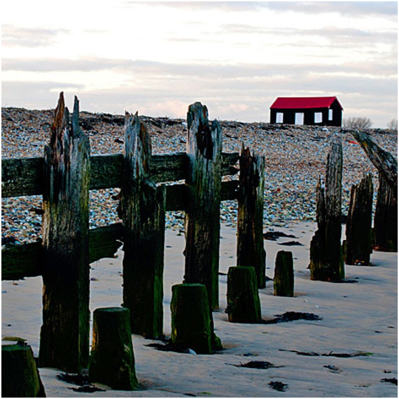 Rye Harbour: beaches make you happy