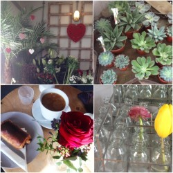 Coffee, roses, tulips in mini milk bottles and succulents in a star shape