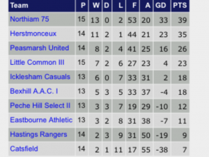 Icklesham Casuals first team sit mid table