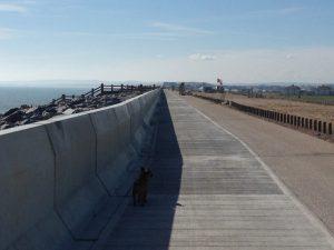 clean sea wall