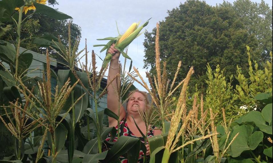 crop share uk