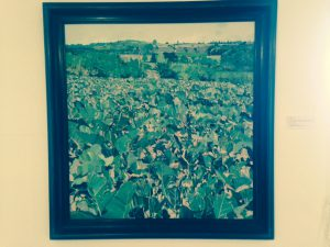 Louis Turpin's view of the cabbage patch, from the permanent collection