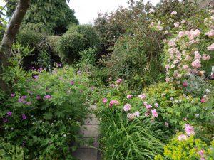 RCS annual garden party