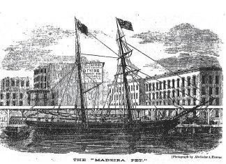 Madeira pet ship